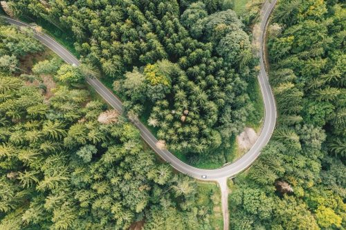 Cómo organizar una ruta en coche para salir a disfrutar del camino